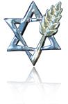 JVT Logo